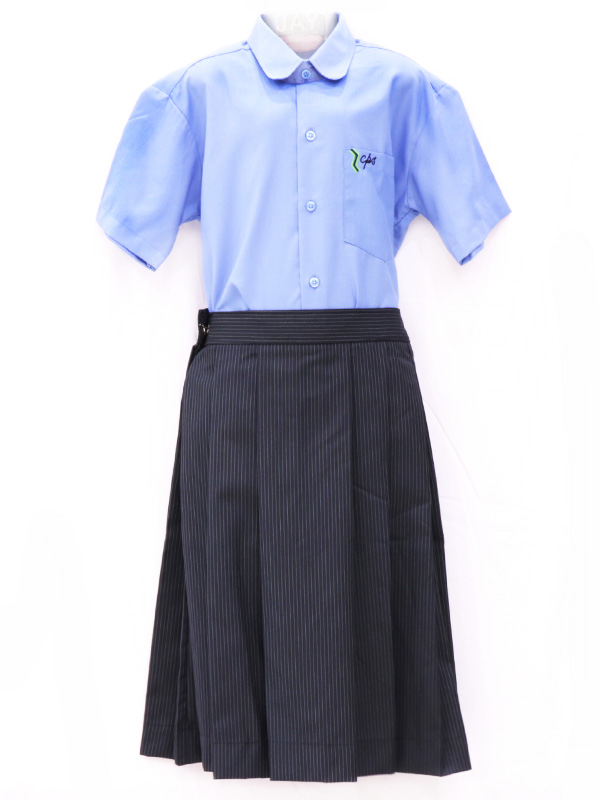 N-Blue Stripe Skirt (Box Pleated) For STD. VI to X Girls